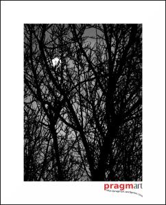 luna atrapada_2006_por_pragmart