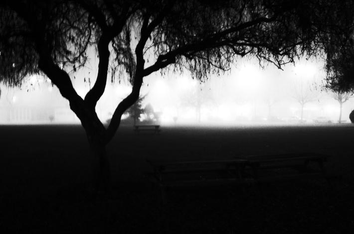 niebla_y_noche_pragmayama_2014_007