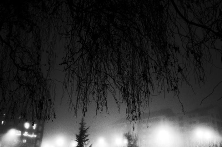 niebla_y_noche_pragmayama_2014_008