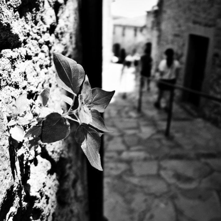 Costa_Brava_16_pragmayama_2013