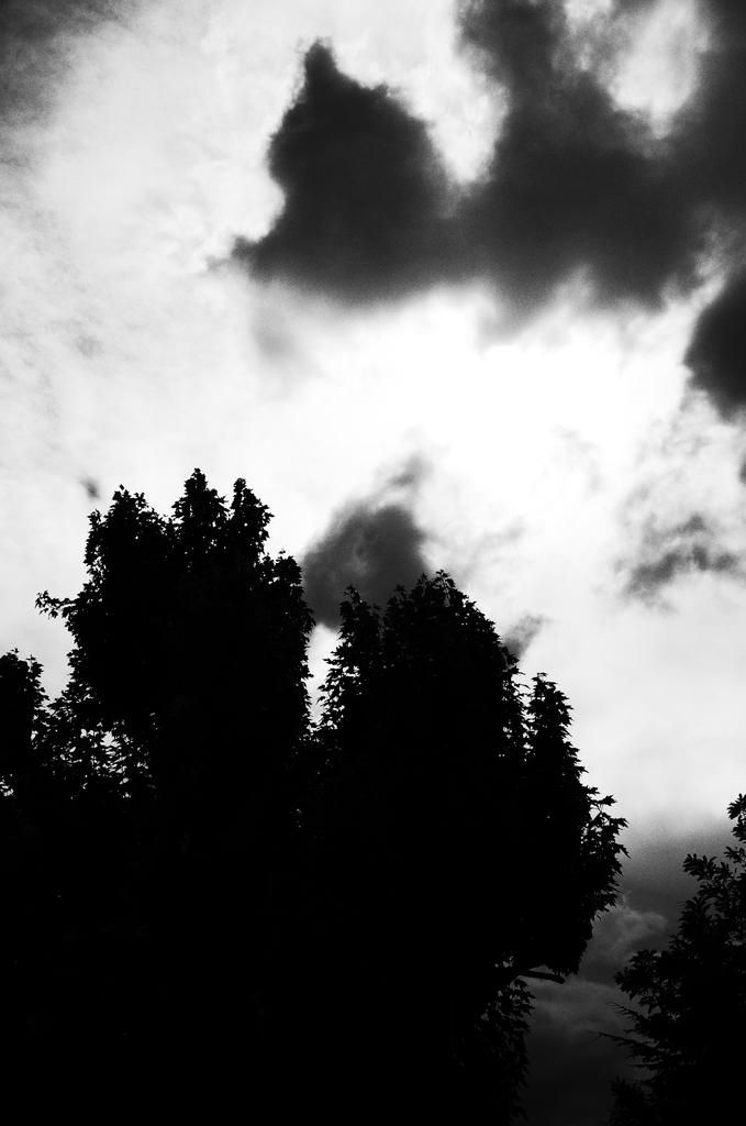leon_-_pragmart_2015_006_1024