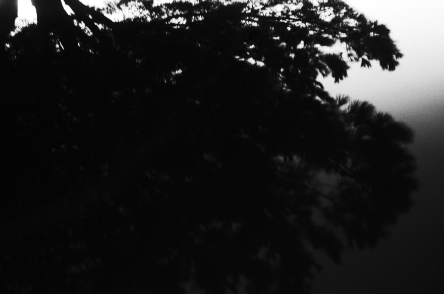 chiclana_pragmart_2015_14