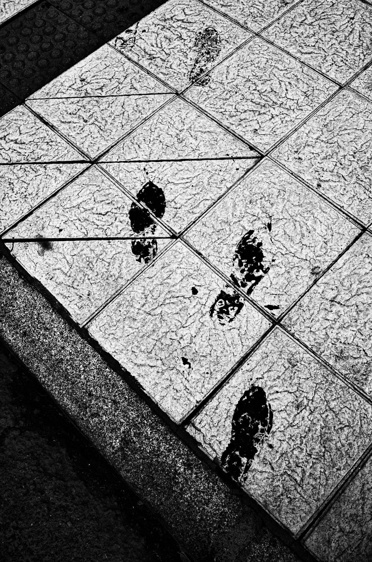 pasos_prohibidos_pragmart_2015_01