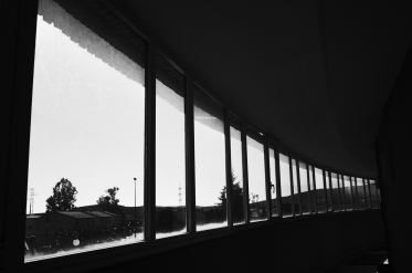 boda_laurita_02_pragmart_2017